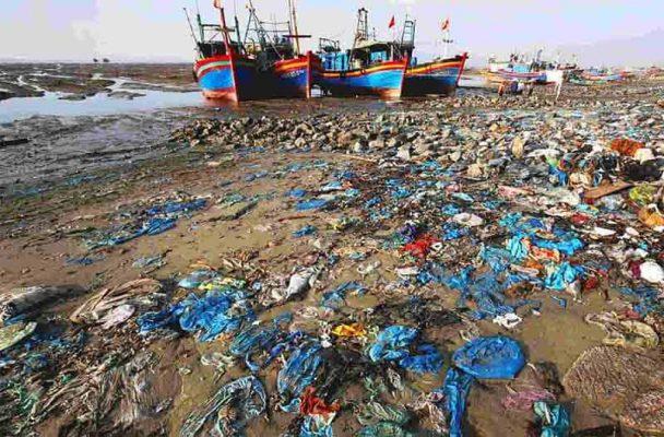 thùng rác biển cửa tùng